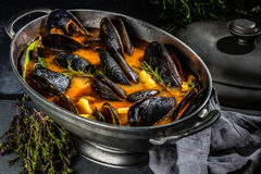 Seafood mussels tomato soup in metal pot stock photography