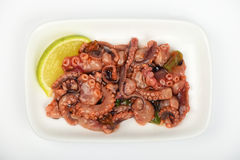 Seafood octopus salad snack on white plate Stock Photos