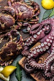 Seafood octopus. Whole fresh raw octopus and crabs on wooden board with lemon and laurel, gray slate background, top view.  Stock Photography