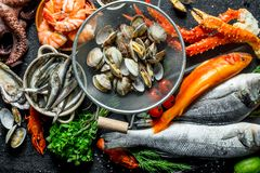 Seafood. Oysters, fresh fish, shrimp, crab with aromatic herbs. Top view stock images
