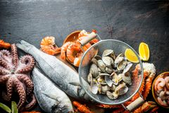 Seafood. Oysters, fresh fish, shrimp, octopus and crab with lemon slices. On dark rustic background royalty free stock photos