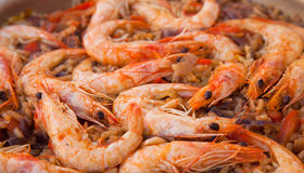 Seafood paella. Rice, vegetables, king prawns Royalty Free Stock Photos