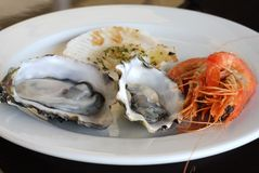 Seafood Plate Stock Images