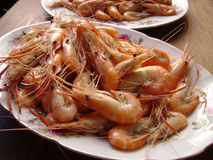 Shrimps platter Stock Images