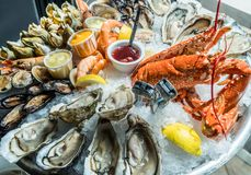 Free Seafood Plate. Different Molluscs And Crustaceans Lay Over Ice Royalty Free Stock Image - 167984286
