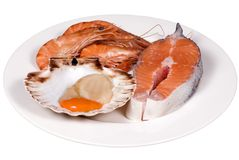 Seafood plate (raw). Fresh Prawns and Scallops with a slab of salmon... ready for the grill Royalty Free Stock Photography