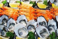 Seafood plate set on ice selling at market. Close up detail on s royalty free stock image