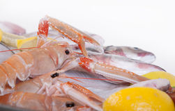 Seafood plate,  in Silver Restaurant Cloche Stock Photography