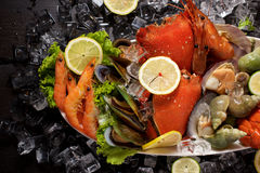 Seafood plater on slate Royalty Free Stock Image