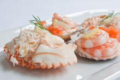 Seafood Platter. Prawns and smoked salmon in scallop shells garnished with dill and lemon Stock Images