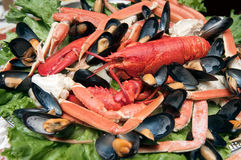 Seafood platter Stock Photos