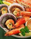 Seafood Platter Stock Image