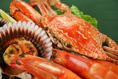 Seafood Platter Royalty Free Stock Image