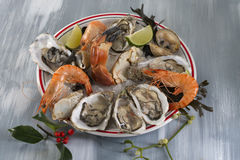 Seafood platter with  oyste and shrimp Stock Photo
