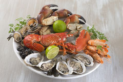 Seafood platter with  oyste and shrimp Royalty Free Stock Images