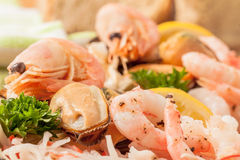Seafood Platter Prawn and Mussel Stock Images