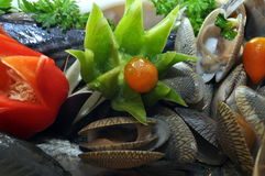 Seafood platter. Ready for steamboat Royalty Free Stock Photo