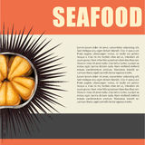 Seafood poster with sea urchin Royalty Free Stock Photos