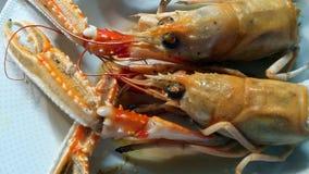Seafood prawn Royalty Free Stock Images