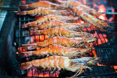 Seafood Prawn Shrimp barbecue Stock Photography