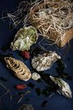 Seafood produce, oysters in a wooden box. Stock Photography
