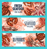 Seafood product sketch banner set for food design Royalty Free Stock Photos