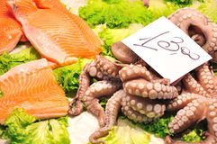 Seafood. Stock Photos