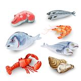 Seafood Products Set Stock Photos