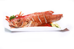 Seafood red grouper. Photograph of seafood red grouper Royalty Free Stock Images