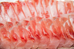 Seafood red snapper fish meat sliced Royalty Free Stock Image