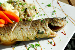 Seafood at the restaurant. Gourmet seafood dish Stock Photography