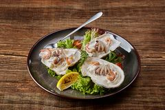 Seafood. Restaurant cuisine, healthy delicatessen food. Oysters, shrimps, octopus in white cream sauce in the shell of Stock Images