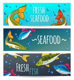 Seafood Restaurant. Seafood Background. Fresh fish, salmon. Vector illustration Royalty Free Stock Photography