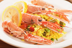 Seafood risotto with shrimps Royalty Free Stock Photo