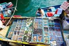 The seafood of Sai Kung Royalty Free Stock Image