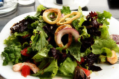Seafood salad. Details of a seafood salad with sliced pieces salad, shrimp and octopus Stock Image