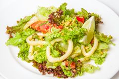 Seafood Salad with Calamari Rings Stock Image