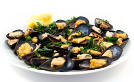 Seafood salad with fresh mussels Stock Images