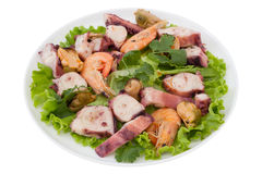 Seafood salad with parsley Stock Photos