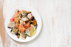 Seafood salad on plate Stock Images