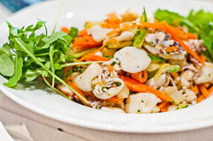 Seafood salad with rucola and small octopus. Seafood salad with arugula, baby octopus, carrots and zucchini Royalty Free Stock Photography