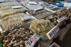 Seafood for sale at the Noryangjin Fish Market in Seoul Stock Images