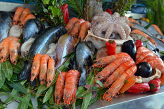 Seafood in the sea market Royalty Free Stock Photography