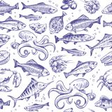 Seafood seamless pattern. Sketch fish hand drawn sea ocean marine tuna dorado sturgeon salmon menu natural texture royalty free illustration