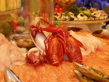 Seafood selection. Table at the hotel Stock Photography