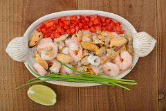 Seafood selection on ceramic plate Stock Image