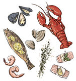 Seafood selection. Vector illustration. Stock Photo