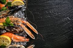 Seafood served on black stone Royalty Free Stock Photo