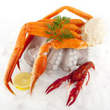 Seafood Served On Ice Stock Image
