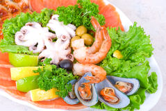 Seafood set royalty free stock photography